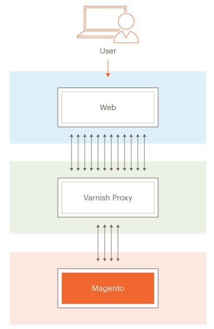 Magento 2 Varnish Cache Topology