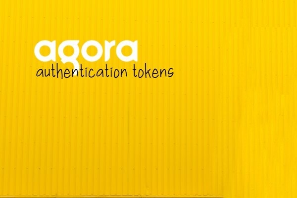 Agora express token server