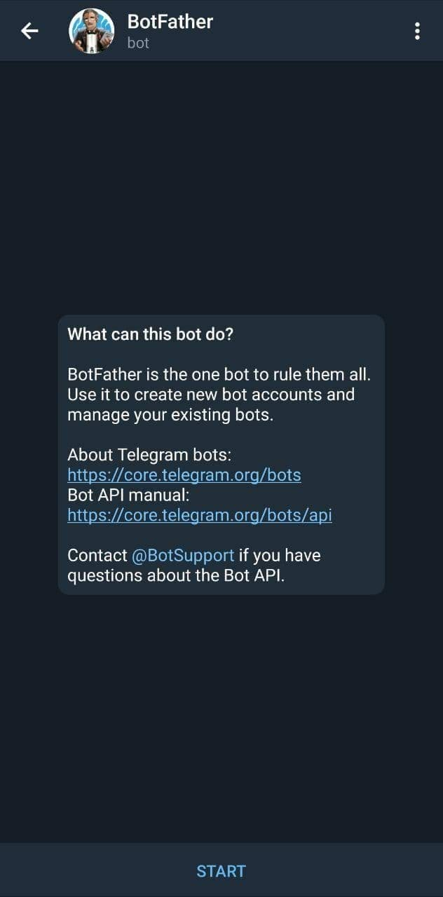 chatting with botfather